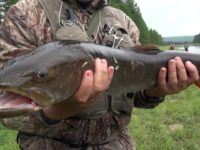 Russia – Fishing for taimen and pike on the rivers of Yakutia PART 2 Pike on spinning.