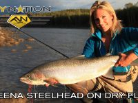 Fly Nation Skeena Steelhead on Dry Flies